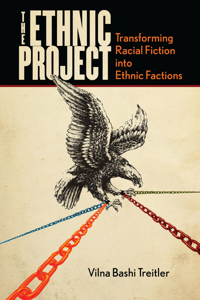 Cover of The Ethnic Project by Vilna Bashi Treitler