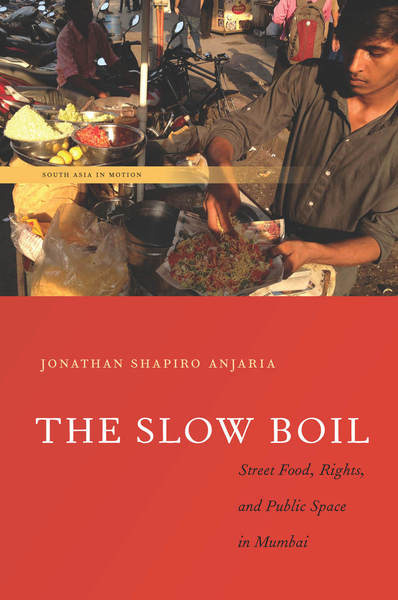 Cover of The Slow Boil by Jonathan Shapiro Anjaria