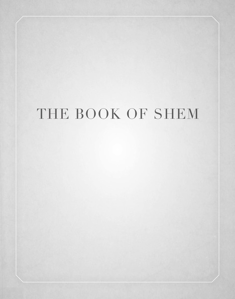 Cover of The Book of Shem by David Kishik
