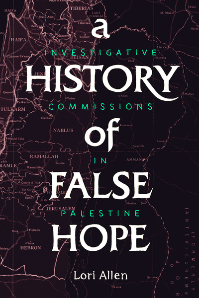 Cover of A History of False Hope by Lori Allen