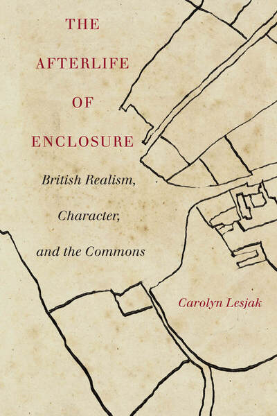 Cover of The Afterlife of Enclosure by Carolyn Lesjak